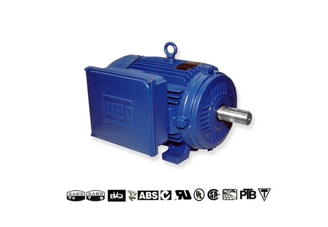 weg-cast-iron-&-aluminium-single-phase-motors-image-1
