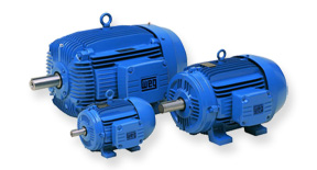 WEG Cast Iron & Aluminium Three Phase Motors