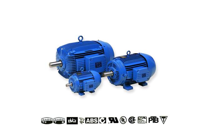 weg-cast-iron-&-aluminium-three-phase-motors-image-1