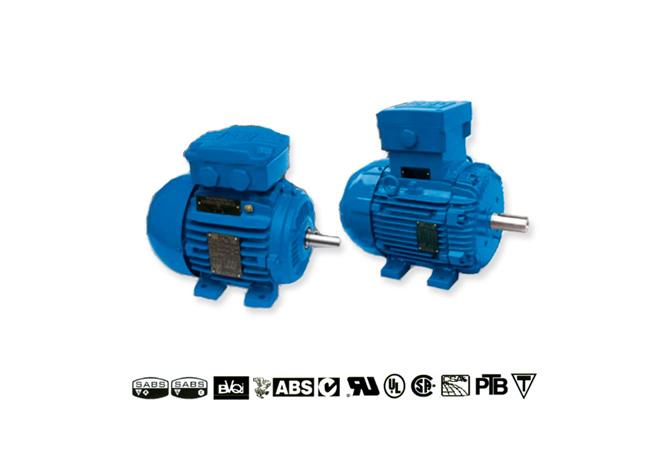 weg-explosion-proof-motors-image-1