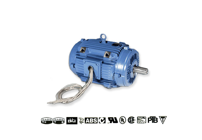 weg-pad-mounted-motors-image-1