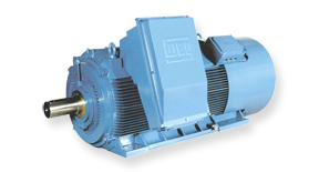 WEG H Line High Voltage Motors