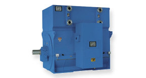 WEG M Line High Voltage Motors