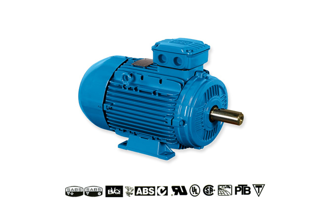 weg-multi-mounting-aluminium-frame-motors-image-1