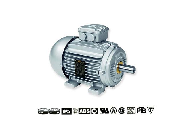 weg-smoke-extraction-motors-image-1