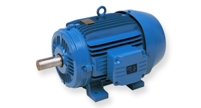 WEG Two Speed Motors